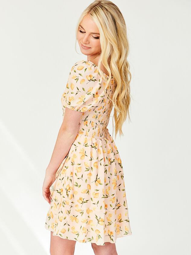 Pink Lemonade Dress Detail 2 - Altar'd State