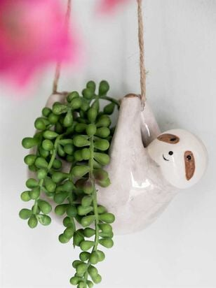 Hanging Sloth Succulent - Altar'd State