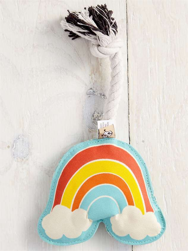 Rainbow Dog Toy - Altar'd State