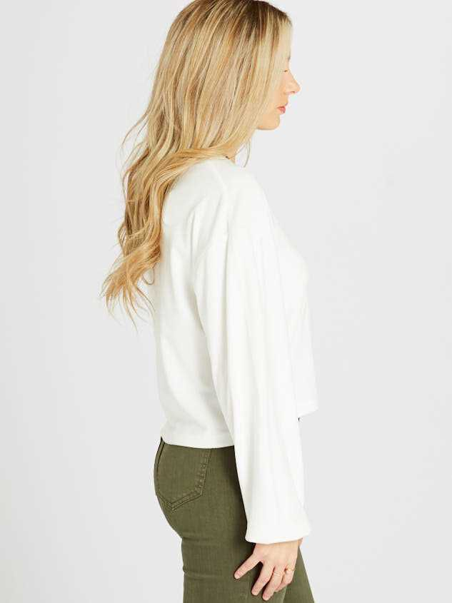 Milky Velour Balloon Sleeve Top Detail 2 - Altar'd State