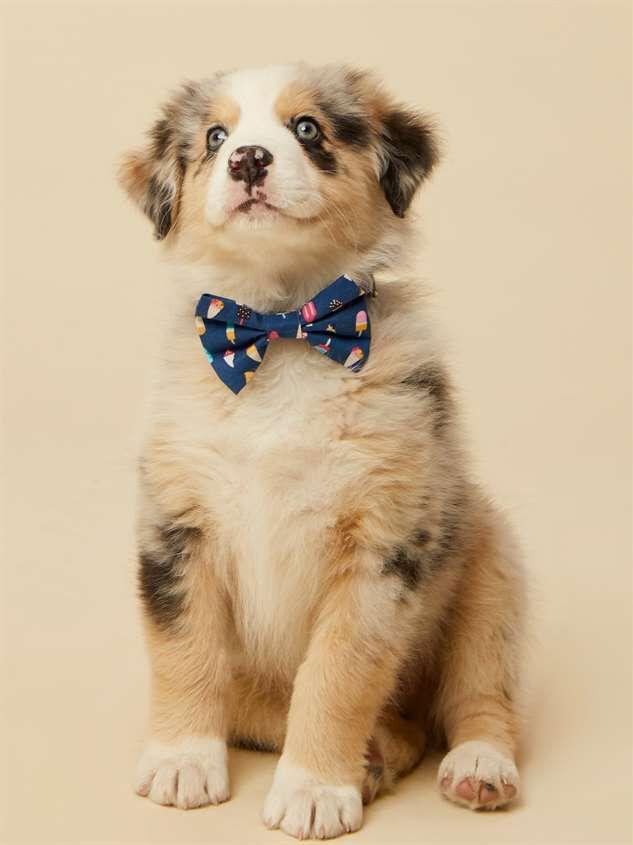 Bear & Ollie's Ice Cream Dog Collar Bow Tie Detail 2 - Altar'd State