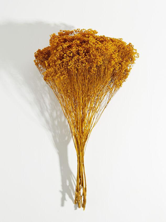 Dried Broom Bloom Flowers - Altar'd State