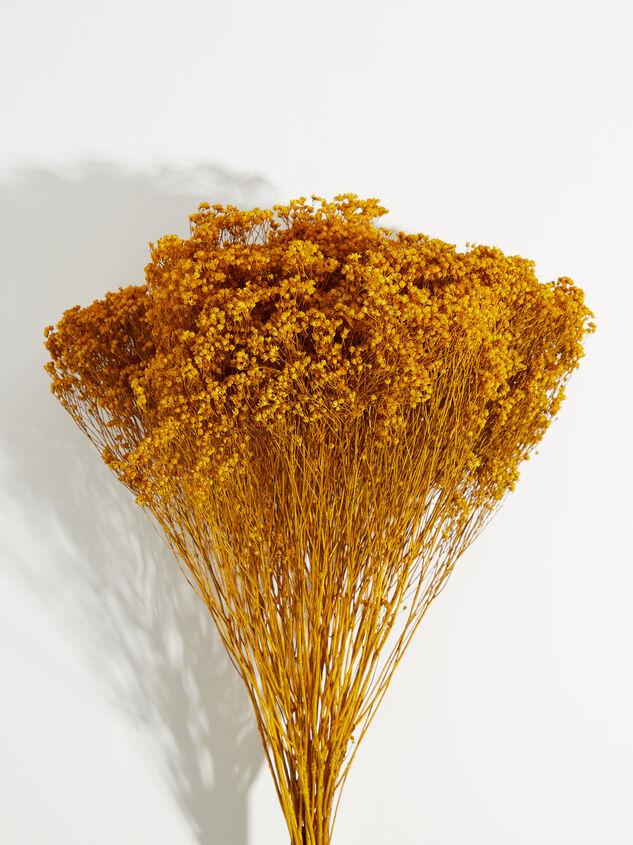 Dried Broom Bloom Flowers Detail 2 - Altar'd State