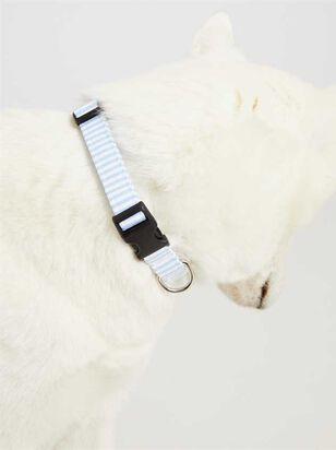 Bear & Ollie's Blue Seersucker Collar - Medium - Altar'd State