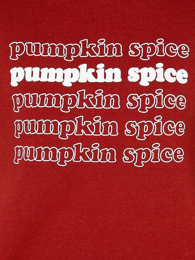 Pumpkin Spice Hoodie Detail 4 - Altar'd State