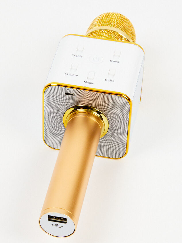 Handheld Karaoke Microphone - Gold Detail 2 - Altar'd State