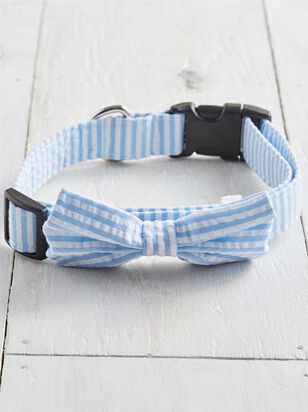 Bear & Ollie's Blue Seersucker Collar - Large - Altar'd State