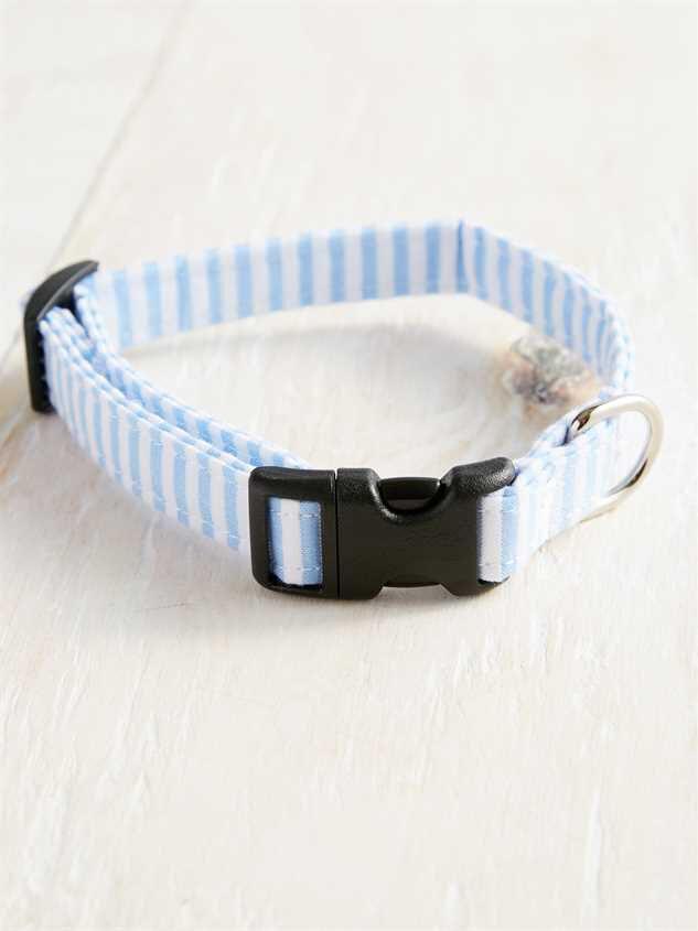 Bear & Ollie's Blue Seersucker Collar - Small - Altar'd State