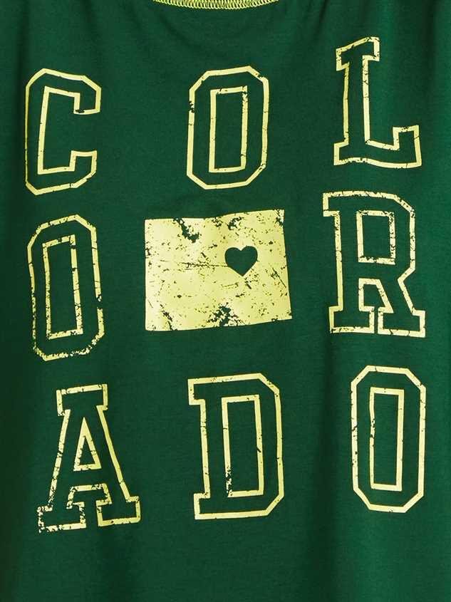 Colorado State Pride Top Detail 4 - Altar'd State